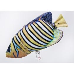 Gaby Pfauenkaiserfisch Mini Kissen, Länge 32 cm